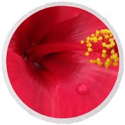 Tropical Hibiscus - Antigua Wind 01 Round Beach Towel