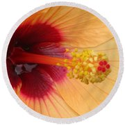 Tropical Hibiscus - Aruba Wind 01 Round Beach Towel