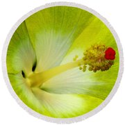Tropical Hibiscus - Bonaire Wind 03a Round Beach Towel