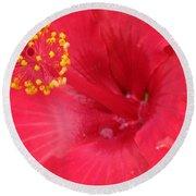 Tropical Hibiscus - Trinidad Wind 01 Round Beach Towel