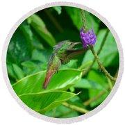 Tropical Hummingbird Round Beach Towel