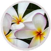Tropical Maui Plumeria Round Beach Towel