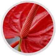 Tropical Red Anthurium Round Beach Towel