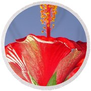 Tropical Red Hibiscus Flower Against Blue Sky  Round Beach Towel