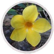 Tropical Yellow Flower Round Beach Towel