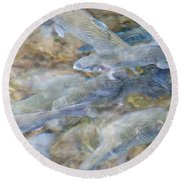 Trout Pond Abstract Round Beach Towel