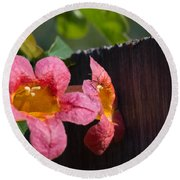 Trumpet Vine With Friend Round Beach Towel