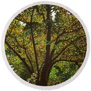 Trunk Of Life Round Beach Towel