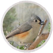 Tuffted Titmouse Early Spring Round Beach Towel