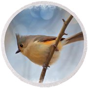 Tufted Titmouse - Digital Paint II With Frame Round Beach Towel