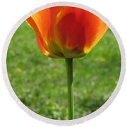 Tulip Backlit 14 Round Beach Towel