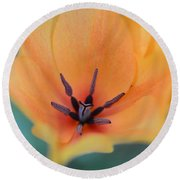 Tulip In Orange Round Beach Towel