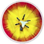 Tulip Nucleus Round Beach Towel