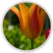 Tulip On The Green Background Round Beach Towel