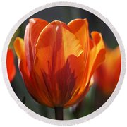 Tulip Prinses Irene Round Beach Towel by Rona Black