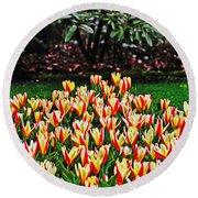 Tulip Stripe Garden Round Beach Towel