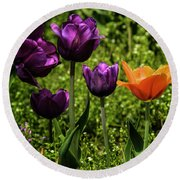 Tulip Time Purple And Orange Round Beach Towel