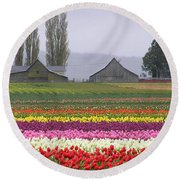Tulip Town Barns Round Beach Towel