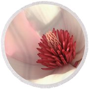 Tulip Tree Blossom Round Beach Towel by Carol Groenen