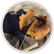 Tulip Tree Leaf - Frozen Raindrops In The Sunshine Round Beach Towel