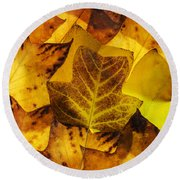 Tulip Tree Leaves In Autumn Round Beach Towel