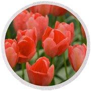 Tulips 33 Round Beach Towel
