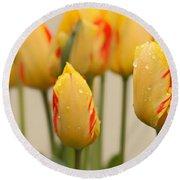Tulips 6 Round Beach Towel