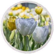 Tulips At Dallas Arboretum V28 Round Beach Towel