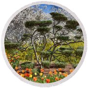 Tulips At Dallas Arboretum V49 Round Beach Towel