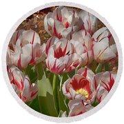 Tulips At Dallas Arboretum V53 Round Beach Towel