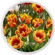 Tulips At Dallas Arboretum V71 Round Beach Towel