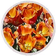 Tulips At Dallas Arboretum V80 Round Beach Towel