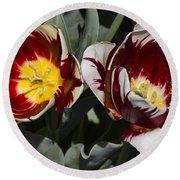 Tulips At Dallas Arboretum V92 Round Beach Towel