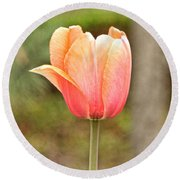 Tulips At Thanksgiving Point - 18 Round Beach Towel