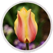 Tulips At Thanksgiving Point - 23 Round Beach Towel