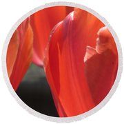 Tulips Backlit 5 Round Beach Towel