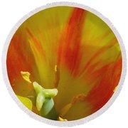 Tulips - Cheerful Energy 06 Round Beach Towel