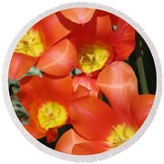 Tulips - Field With Love 25 Round Beach Towel