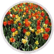Tulips - Field With Love 50 Round Beach Towel