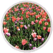 Tulips - Field With Love 55 Round Beach Towel