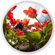 Tulips In Spring Round Beach Towel