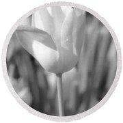 Tulips - Infrared 06 Round Beach Towel