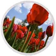 Tulips Leaning Tall Round Beach Towel
