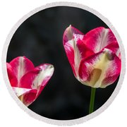 Tulips Of A Kind Round Beach Towel