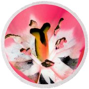 Tulips - Perfect Love - Photopower 2075 Round Beach Towel