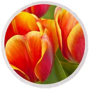 Tulips Red And Yellow Round Beach Towel