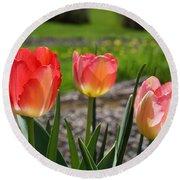 Tulips Red Pink Tulip Flowers Art Prints Round Beach Towel