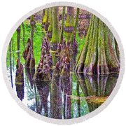 Tupelo/cypress Swamp Reflection At Mile 122 Of Natchez Trace Parkway-mississippi Round Beach Towel