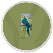 Turk Macaw Round Beach Towel