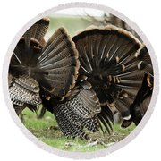 Turkey Butt Strut Round Beach Towel
